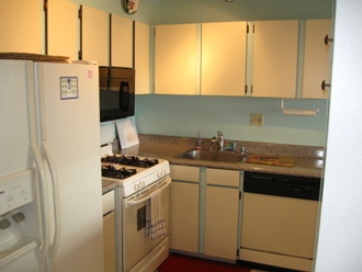 Fully equipped Kitchen with ice maker